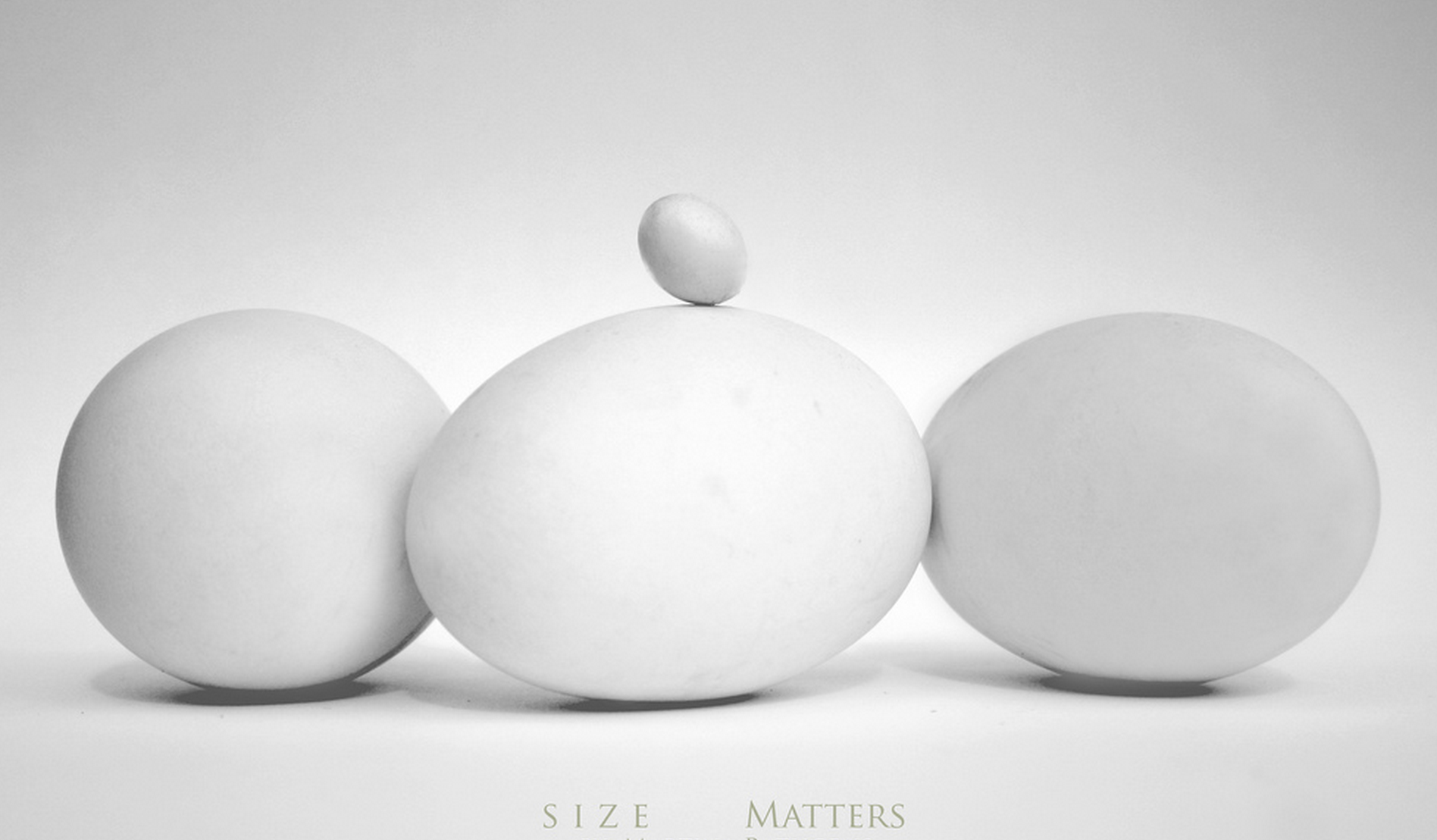 size-matters-eggs