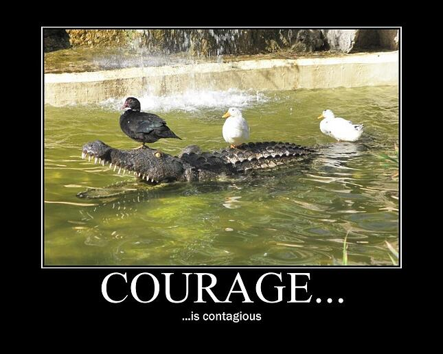 Courage-Promotes-Teamwork-and-Employee-Engagement